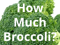 how much broccoli