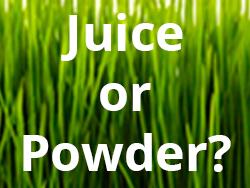Wheatgrass Juice or Powder